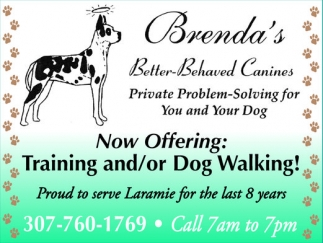 Training and/or Dog Walking!