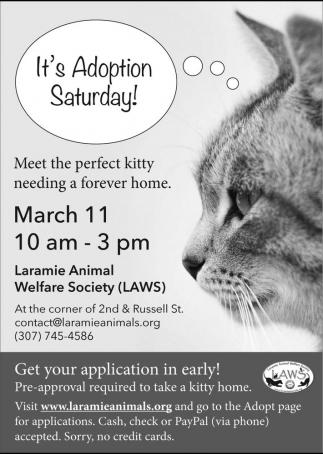 It's adoption Saturday!