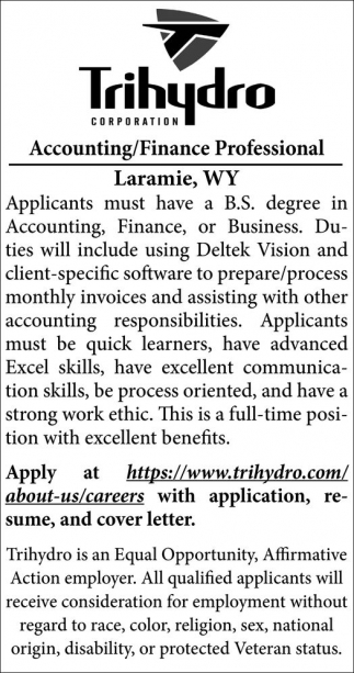 Accounting/Finance Professional