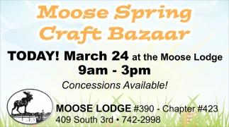 Moose Spring Craft Bazaar