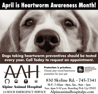 April is Heartworm Awareness Month