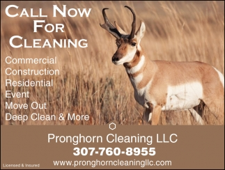 Call Now for Cleaning