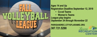 Fall Volleyball League