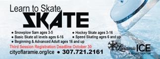 Learnto Skate