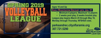 Spring 2019 Volleyball League