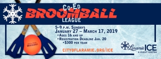 Co-Ed Broomball League