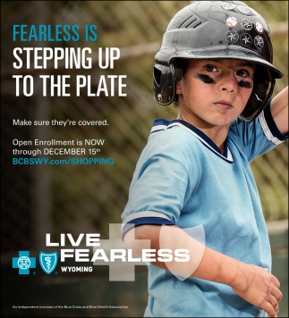 Fearless Is Stepping Up to the Plate