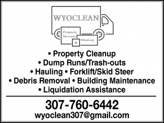 Property Cleanup