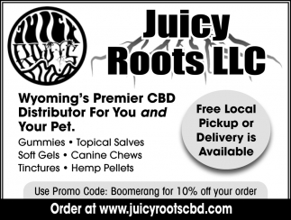 FREE Local Pickup or Delivery is Available