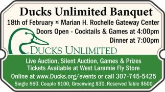 Ducks Unlimited Banquet